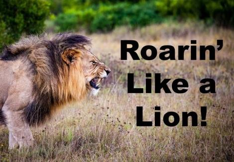 Roarin Like a Lion