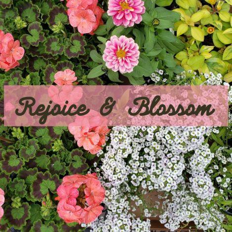 Rejoice & Blossom